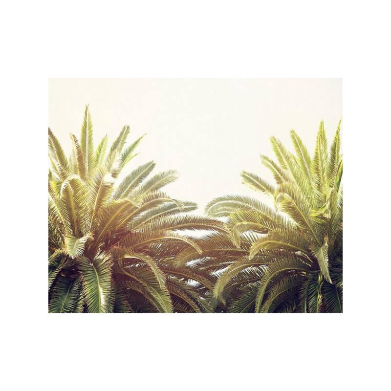 Bree Madden Golden Palms Print