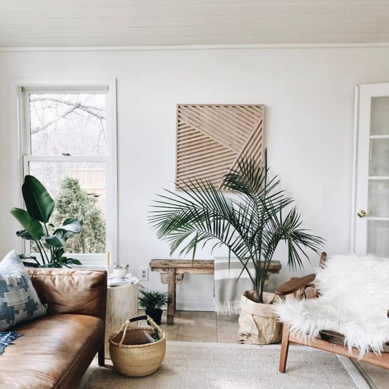 Modern bohemian living room with plants