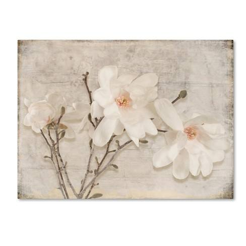 Spring Magnolia' by LightBoxJournal Ready to Hang Canvas Wall Art