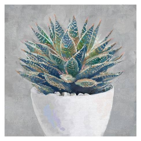 "30""x30"" Potted Succulent I By Studio Arts Art On Canvas - Fine Art Canvas"