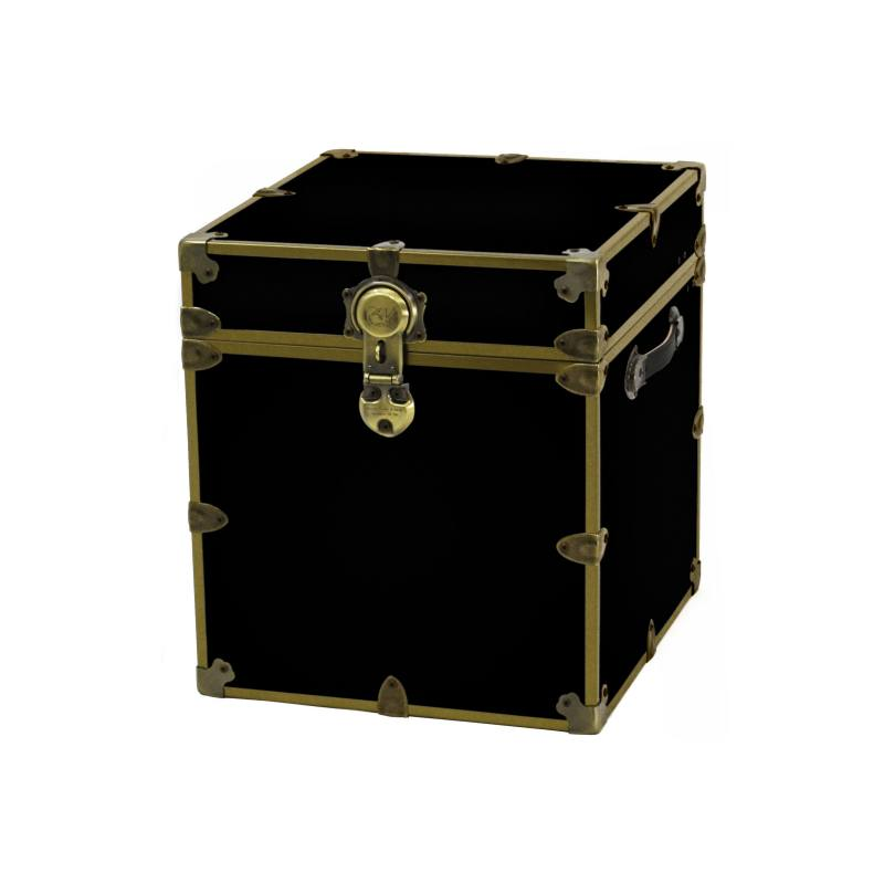 Rhino Trunk & Case Brass Armor Cube Trunk