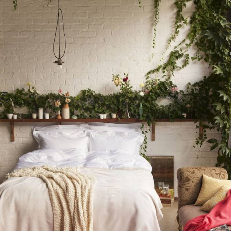 Bohemian vine filled bedroom