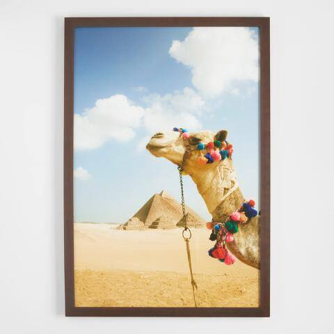 Camel in the Desert by Grant Faint