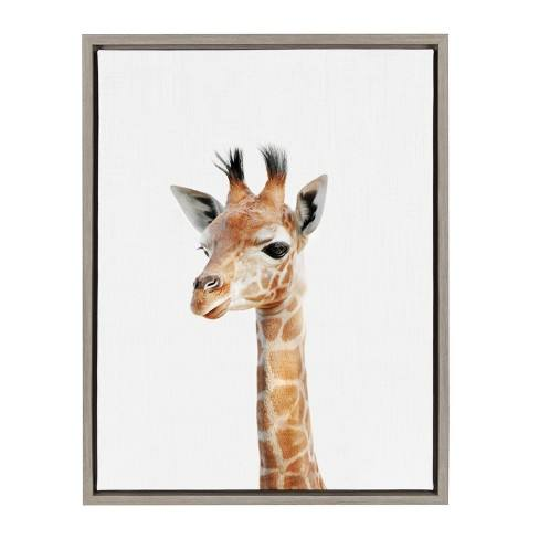 "Kate & Laurel 24""x18"" Sylvie Baby Giraffe Animal Print Portrait By Amy Peterson Framed Wall Canvas Gray"