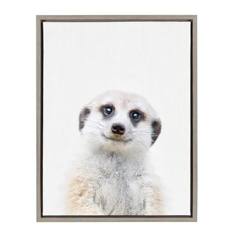 "Kate & Laurel 24""x18"" Sylvie Baby Meerkat Animal Print Portrait By Amy Peterson Framed Wall Canvas Gray"