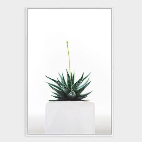 Potted Succulent Wall Art in White Frame