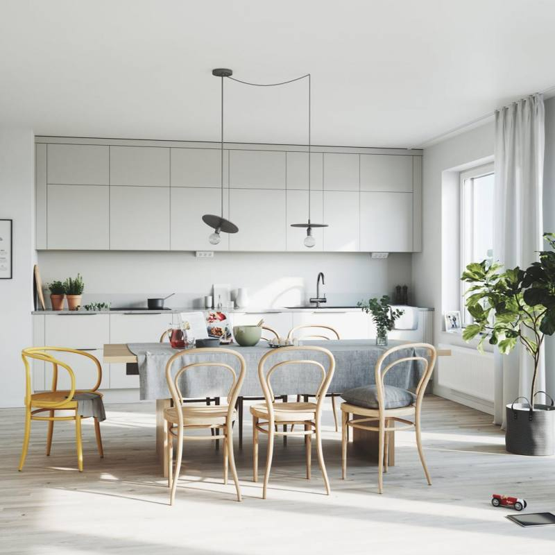 Scandinavian dining room and kitchen Interior Design