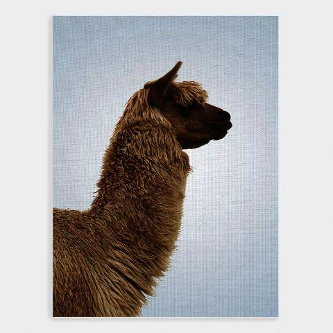 Llama in Profile Canvas Wall Art