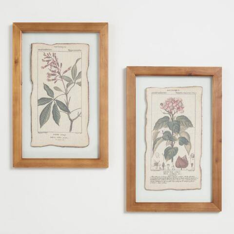 Botanical Prints Framed Linen Wall Art Set of 2